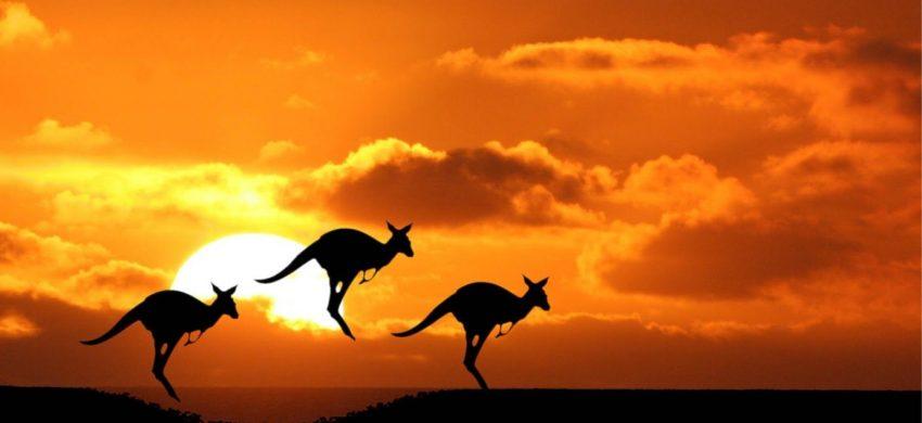 công ty tư vấn du học Úc uy tín