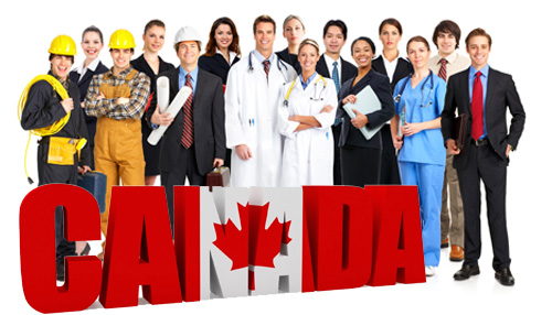 Đi du học Canada nên học ngành gì thì tốt nhất?